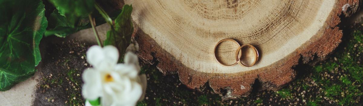 Co warto wiedzieć przed zakupem obrączek z drewnem